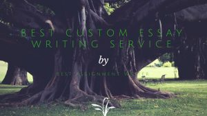 Best Custom Essay Writing Service by Best Assignment Writer
